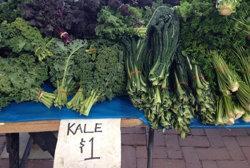 Vegan Diet Kale and dark leafy veg