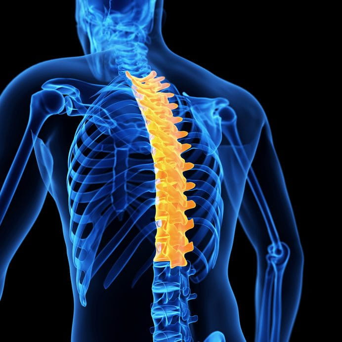 Joint restrictions thoracic spine