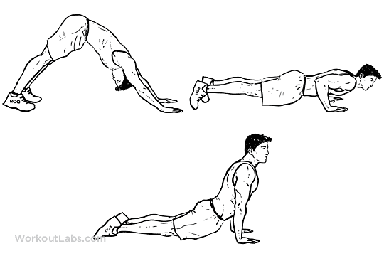 press up variations dive press up