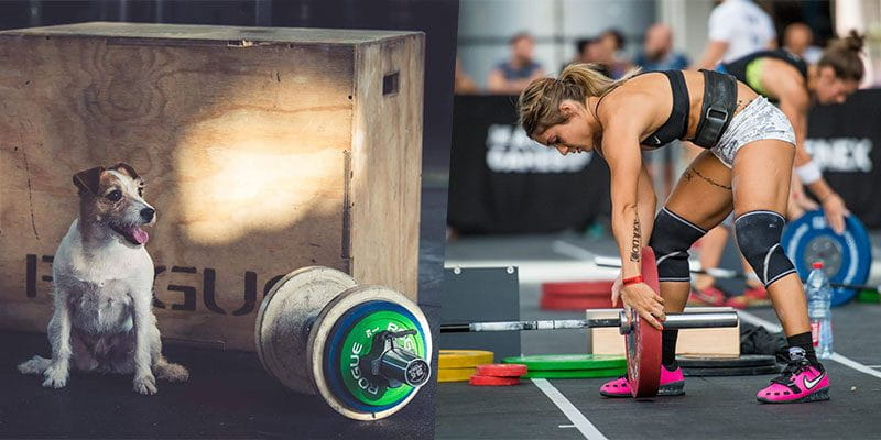 7 Exercises Every Crossfit Beginner Needs to Master