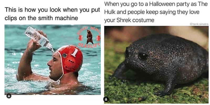 gym-memes